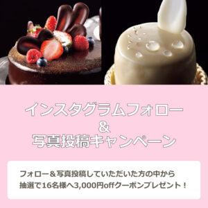 インスタ企画_会社HPお知らせ用